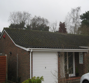 Roof Cleaning Process image